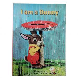 I am a Bunny (soft cover)